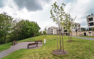 Ostrava, zelená střecha a park u bytových domů Františkov