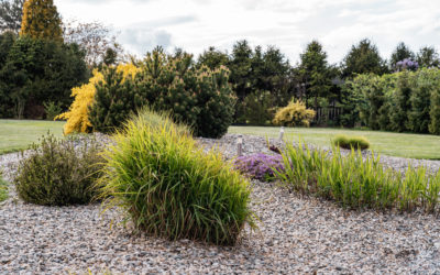 Havířov, minimalistická zahrada