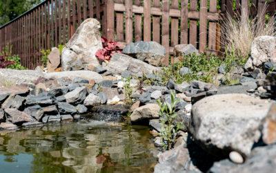 Havířov, zahrada u restaurace s jezírkem